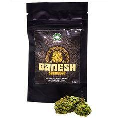 ganesh-cannabe