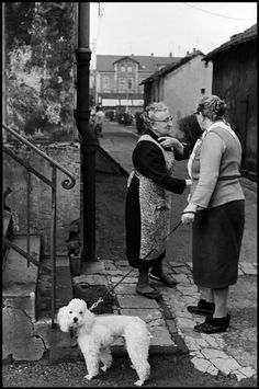 West Germany 1965 by Leonard Freed Types Of Photography, Free Photography, Black N White Images, Black And White, Leonard Freed, Vintage Dog, Oui Oui, Magnum Photos, Photo Black