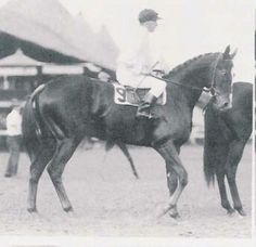 Regret First filly to win the Kentucky Derby