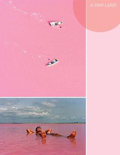 pink-lake: Lake Retba