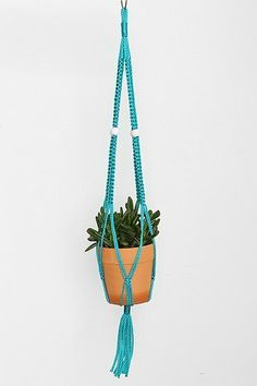 Perfect for greens that won't take up space. #urbanoutfitters