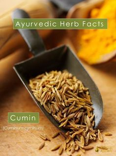Ayurvedic Herb Facts - Cumin  Cumin is balancing for all three doshas. It aids digestion and helps flush toxins out of the body. Cumin can be used either as whole seeds or ground, raw or dry-roasted.