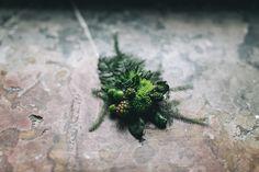 All green: Boutonniere for the groom | Dein Hochzeitsblog | green Wedding Inspiration | www.deinhochzeitsblog.com