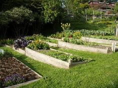 If space is an issue the answer is to use garden boxes. In this article we will show you how all about making raised garden boxes the easy way. Terraced Vegetable Garden, Raised Vegetable Gardens, Hillside Garden, Sloped Garden, Veg Garden, Vegetable Garden Design, Terrace Garden, Raised Garden Beds, Vegetable Gardening