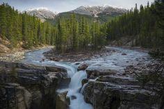 Les chutes de Sunwapta - Les chutes de Sunwapta sont un arrêt obligé dans le Parc National de Jasper dans les Montagnes Rocheuses. ©  Lauren Bath