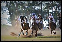1bb7017108f3 horse polo games - Google Search Polo Team