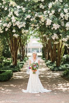 Crape Myrtle Allee at the Atlanta Botanical Garden drips with florals every summer – perfect for a Garden wedding! Photo by Rustic White Photography