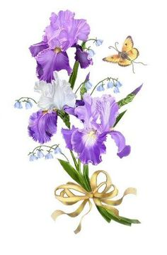 iris come in many colors an Botanical Illustration, Botanical Prints, Illustration Art, Flower Images, Flower Pictures, Art Floral, Impressions Botaniques, Iris Art, Iris Painting