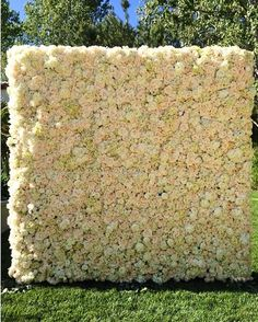 Wall of flowers peonies hydrangeas and roses. I'd settle for a big bouquet! :)