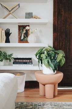Lighten up any space with an artificial angel wing begonia. Enjoy the freshness of a beautiful house plant without the maintenance. Shop this look by @raising3foodies at Afloral.com. Decorating Small Spaces, Decorating Your Home, Keep Life Simple, Artificial Succulents, Silk Plants, Real Plants, Begonia, Low Lights, Silk Flowers