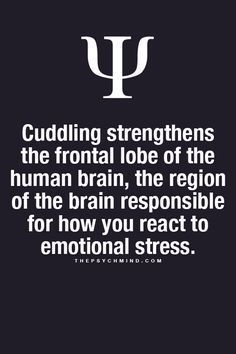 cuddling strengthens the frontal lobe of the human brain, the region of the brain responsible for how you react to emotional stress.