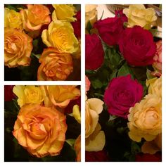 I just couldn't leave these gorgeous roses behind... #weekend