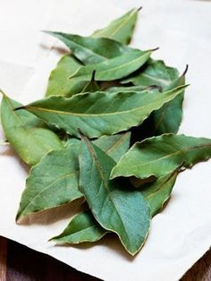 The laurel to recover a cloth that has rubbed off