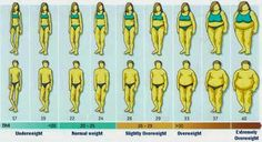 Free BMI calculator - Check your body weight stage online...