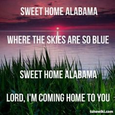 sweet home alabama - lynard skynard Sweet Home Alabama Song, Music Songs, My Music, Country Music Lyrics, Country Songs, Lynard Skynard, Im Coming Home, Beautiful Lyrics, Home Studio Music