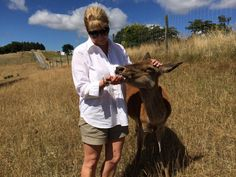 Despite having no teeth Paula, the grandma deer of the Mountain Red farm still loves her apples.