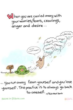 Francois Lange - Yogi Turtle - When you are carrie away with your worries, fears, cravings, anger and desire.... you run away from yourself and you lose yourself. The practice is to always go back to oneself.