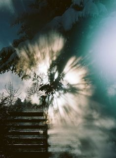 Light burst by Trevor Triano