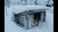 feelapland - YouTube Enjoy The Silence, Arctic Circle, Midnight Sun, Reindeer, The Incredibles, Activities, Winter, Youtube, Winter Time