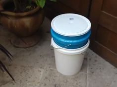 Simple two-bucket compost bin for worms