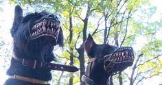 Этот намордник превратит даже самую милую собаку в свирепого монстра (4 фото)