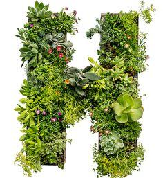 Planter letters