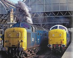 British Rail, Diesel Locomotive, Trains, Vehicles, Blue, Car, Train, Vehicle, Tools