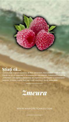 Strawberry, Cupcakes, Fruit, Blog, Cupcake, The Fruit, Strawberry Fruit, Cupcake Cakes, Blogging