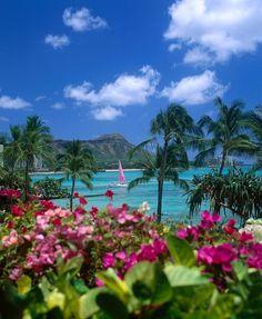 ✯ Diamond Head Paradise - Oahu, Waikiki, Hawaii -- Hawaii is the most beautiful island Paradise I have ever seen, the one most deserving of the term Paradise. I am happy to have climbed Diamond Head. Hawaii Vacation, Hawaii Travel, Dream Vacations, Vacation Spots, Oahu Hawaii, Waikiki Beach, Hawaii Honeymoon, Honolulu Oahu, Maui