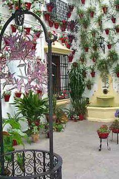 Plaza de los Aguayos 2  Patios  de  Cordoba