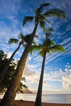 A moment to reflect. Kauai, Hawaii.