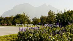 #Monterrey #México - Muestra portafolio #México lindo y querido
