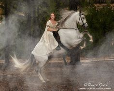 Horse Fashion Photography Learn about www. Horse Flowers, Riding Stables, Horse Fashion, Horse Photography, Fashion Photography, Equine Art, Love Pet, Horse Art, Beautiful Horses