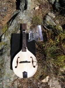 Mandolin kit a model w book gift ideas pinterest mandolin snowflake guitars talks about building a5 mando from kit and moving on to fancier instrument building solutioingenieria Image collections