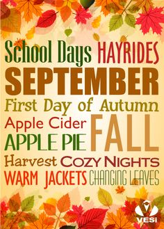 Fall is here! What is your favorite part of the season?
