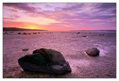 Drayton Harbor in Blaine, WA Photography Lessons, Nature Photography, Bay Area, Beaches, Washington, Coast, Wings, Wanderlust, Inspire
