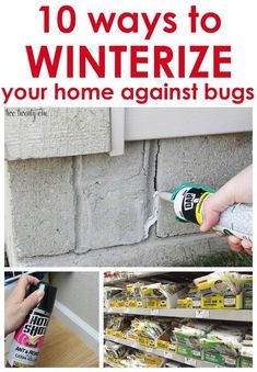 10 ways to winterize your home against bugs! Great tips! 10 ways to winterize your home against bugs! Great tips! The post 10 ways to winterize your home against bugs! Great tips! Home Improvement Contractors, Home Improvement Loans, Home Improvement Projects, Home Projects, Home Improvements, Home Renovation, Home Remodeling, Kitchen Remodeling, E Learning
