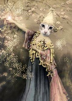 1000 Images About Anthropomorphic On Pinterest Pet