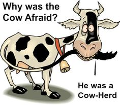 Cow Jokes What's April how come it a laugh, the length of time has Jokes And Riddles, Puns Jokes, Corny Jokes, Funny Jokes For Kids, Kid Jokes, Funny Shit, Funny Puns, Funny Stuff, Hilarious