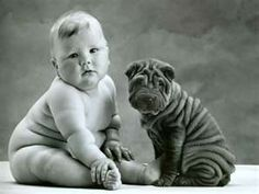 "how many rolls can you count""? lol cute!"