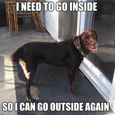 I need to go inside, so I can go outside again