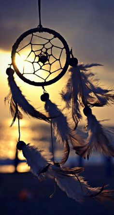 Catch your dreams Dream Catcher Wallpaper Iphone, Iphone Wallpaper, Qhd Wallpaper, Wallpaper Backgrounds, Creative Photography, Nature Photography, Dream Catcher Photography, Beautiful Dream, Beautiful Pictures