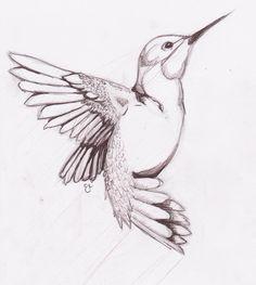 New bird design tattoo hummingbird drawing Ideas Hummingbird Sketch, Watercolor Hummingbird, Hummingbird Tattoo, Watercolor Bird, Tattoo Bird, Raven Tattoo, Bird Drawing For Kids, Bird Pencil Drawing, Pencil Drawings