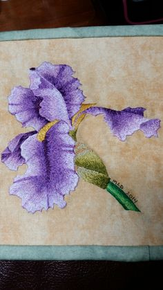 Needle Painting - Purple Bearded Iris - Design from Trish Burr's Long and Short Stitch Embroidery book. - posted on Little Orphan Skein
