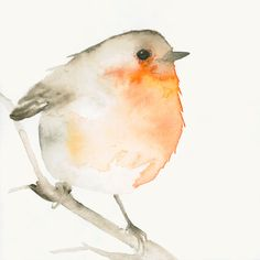 Tiny Red Robin - Fine Art Print from Original Watercolor Painting.  (On Etsy)