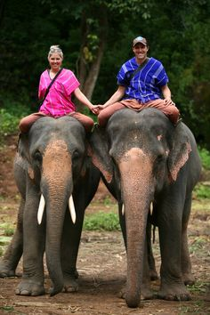 Chiang Mai, Thailand | Patara Elephant Farm
