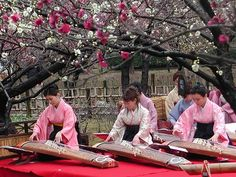 KOTO is considered the national instrument of Japan.