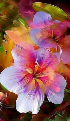 Kristie,  beautiful flowers for a beautiful friend with whom I am totally in love. Hintergrund Design, Exotic Flowers, Colorful Flowers, Beautiful Flowers, Beautiful Friend, Simply Beautiful, Gardening Blogs, Organic Gardening, Hibiscus