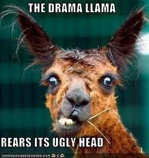 Google Image Result for http://torwars.com/wp-content/uploads/2012/03/drama-llama-rears-its-ugly-head.jpeg