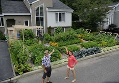 Front Yard Garden champions in Quebec-and their city tried to make them turn 30% into grass! But they fought and won- another win for  growing your own food!!